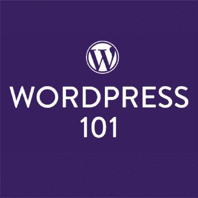 Wordpress 101 by Blog Clairty