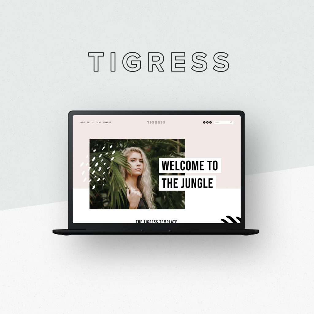 Squarespace templates for creatives - Big Cat Creative - Tigree